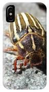 Ten Lined June Beetle IPhone Case
