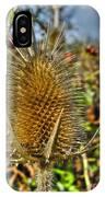 Thistle On Sunny Autumn Day IPhone Case