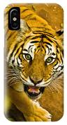 Tiger Stare II IPhone Case