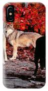 Timber Wolves Under  A Red Maple Tree IPhone Case