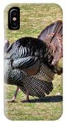 Tom Turkey IPhone Case