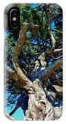 Tree Climbing Paradise IPhone Case