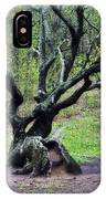 Tree In The Forest IPhone Case