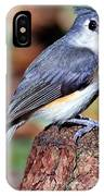 Tufted Titmouse Parus Bicolor IPhone Case