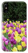 Tulip Flowers In A Garden, Chicago IPhone Case