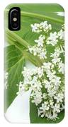 Valerian Flowers (valeriana Officinalis) IPhone Case