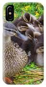 Wa, Juanita Bay Wetland, Mallard Female IPhone Case