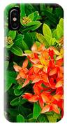 West Indian Jasmine In Sukhothai Historical Park-thailand IPhone Case
