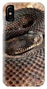 Western Diamondback Rattlesnake IPhone Case
