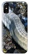 White Moray Eel IPhone Case
