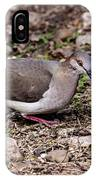 Whitetipped Dove IPhone Case
