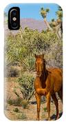 Wild Horse Of Joshua Tree IPhone Case