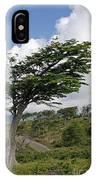 Wind-bent Tree In Tierra Del Fuego IPhone Case