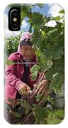 Wine Grape Harvest IPhone Case