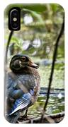 Young Wood Duck IPhone Case