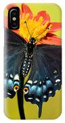 Eastern Black Swallowtail Butterfly IPhone Case