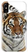 Tigre De Siberie Panthera Tigris Altaica IPhone Case