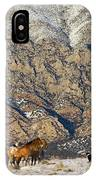 North America, Usa, Wyoming, Shell IPhone Case