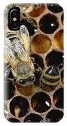 Honey Bees On Honeycomb IPhone Case