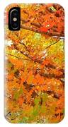 Fall Explosion Of Color IPhone Case