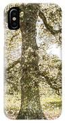 Greenwich Park London Art IPhone Case