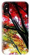 12032013003 IPhone Case