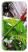 Barriles Flower IPhone Case