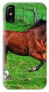 The Bay Horse  IPhone Case