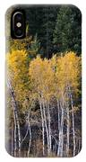 Guardians Of Trestle Creek  -  141102a-138 IPhone Case