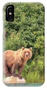 Grizzly Bears Also Called Brown Bears IPhone Case
