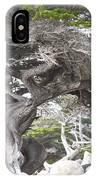 17 Mile Drive Tree IPhone Case