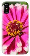 Zinnia From The Whirlygig Mix IPhone Case