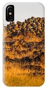 1800s Chinese Rock Fence IPhone Case