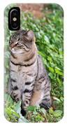 Cat In Hydra Island IPhone Case