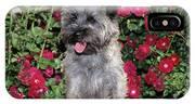 1990s Cairn Terrier Dog Standing IPhone X Case