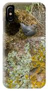 American Dipper And Nest   #1487 IPhone Case