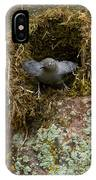 American Dipper And Nest   #1538 IPhone Case