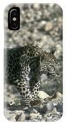 Arabian Leopard Panthera Pardus 1 IPhone Case