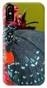 Atala Butterfly IPhone Case