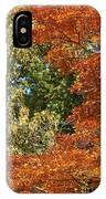 autumn colours in Bavaria IPhone Case