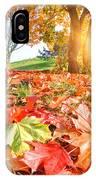 Autumn Fall Landscape In Park IPhone Case