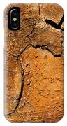 Bark Of A Tree IPhone Case