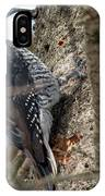 Black-backed Woodpecker IPhone Case