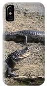 Caiman IPhone Case