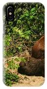 Capybara IPhone Case