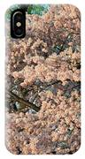 Cherry Blossoms In Pink And Brown IPhone Case