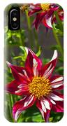 Christmas Star Dahlia And Bee IPhone Case