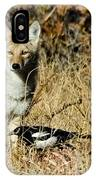 Coyotes IPhone Case