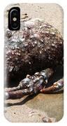 Crab Beach IPhone Case