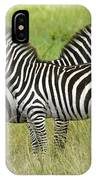 Crisscross Stripes IPhone Case